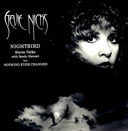 Stevie Nicks - Nightbird